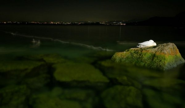 Aufnahme - Stativ - Smartphone Huawei - Toskana - Gardasee