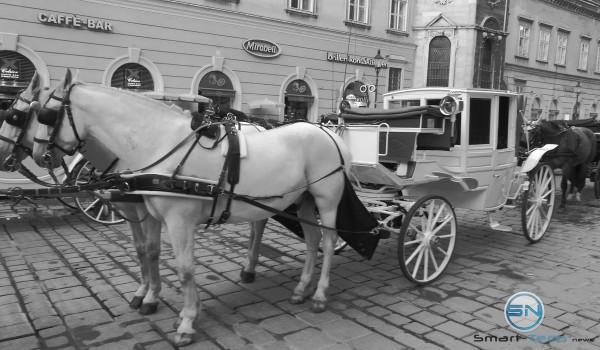 Wien der Fiaker Black and White - Huawei P9 - SmartTechNews